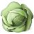 блюда из белокочанной капусты