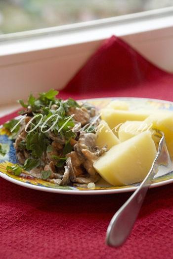 Куриное филе в соусе. Куриное филе со сметаной