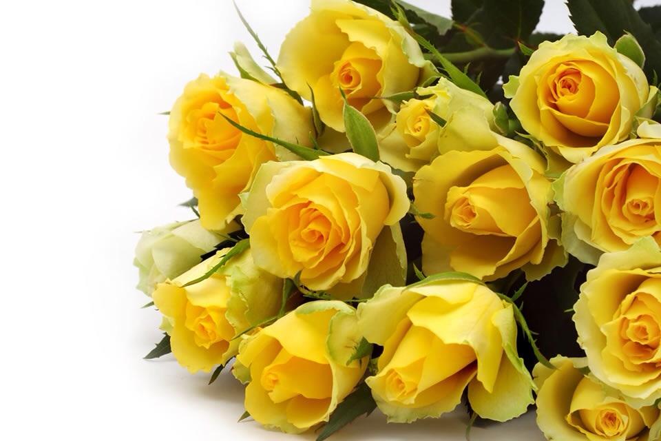 Красивые, открытки букетов желтых роз