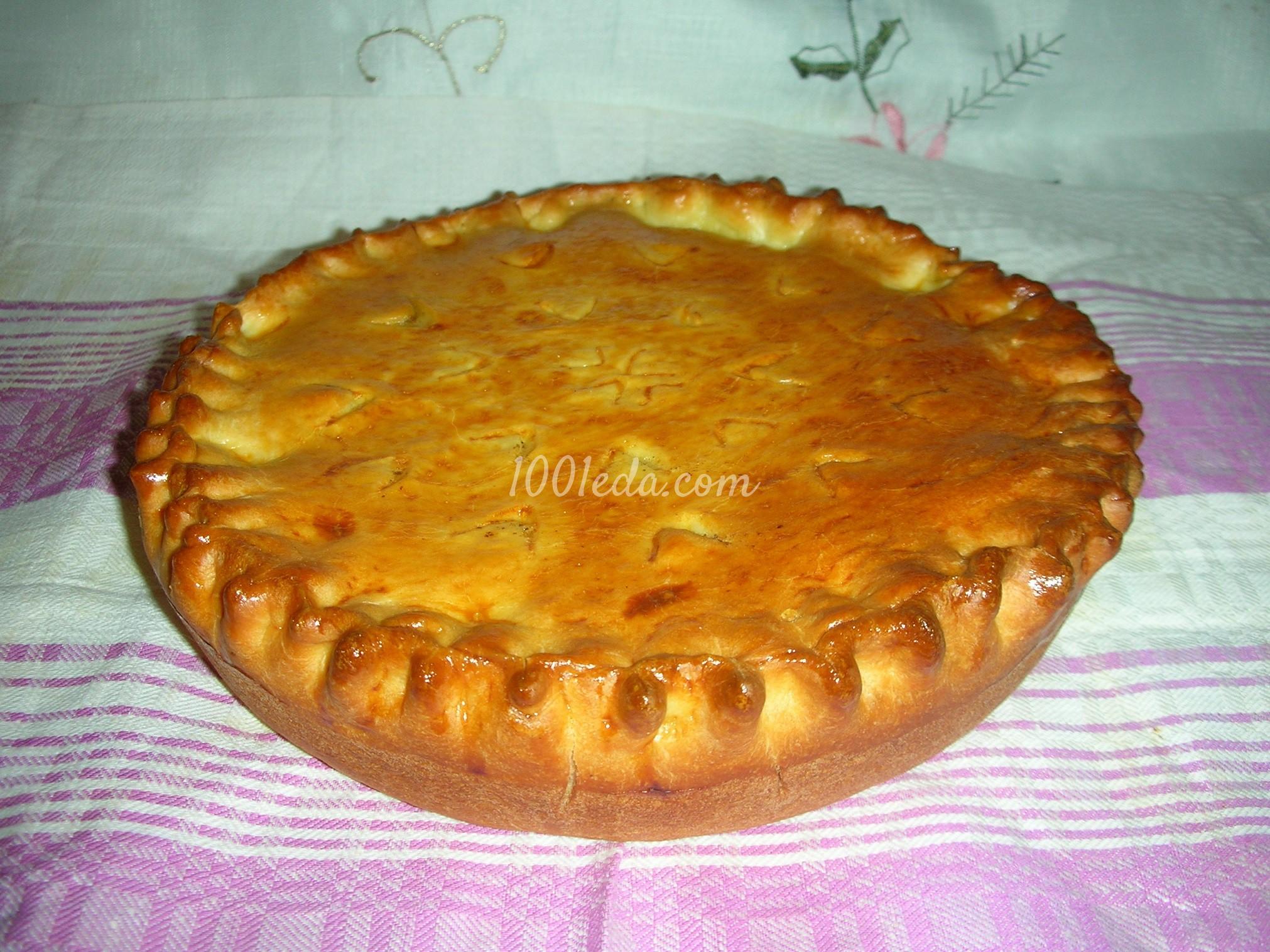 Закрытые пироги из дрожжевого теста пошаговое фото