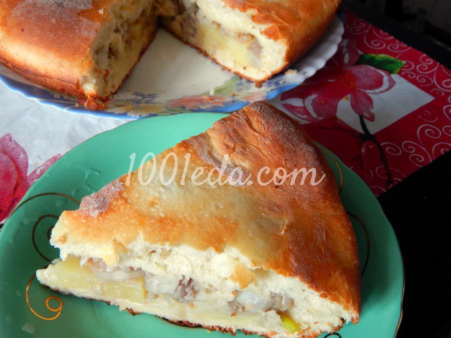Дрожжевой пирог с мясом и картофелем: рецепт с пошаговым фото