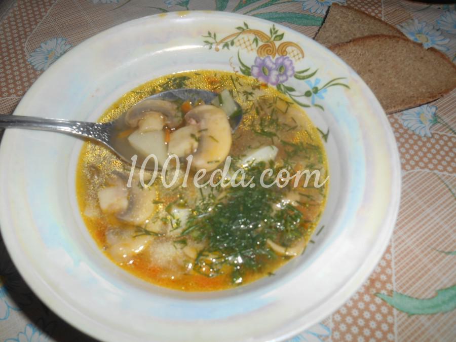 мультиварка редмонд рецепты суп с грибами