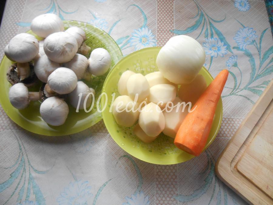 Грибной суп с перловкой: рецепт с пошаговым фото - Шаг №2