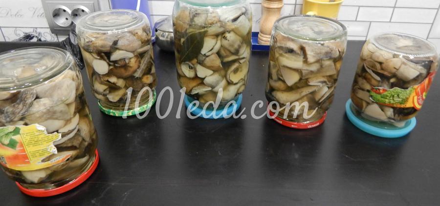 маринованные белые грибы на зиму рецепты с фото