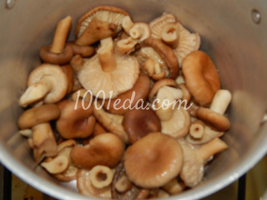 Маринованные волнушки пошаговый рецепт с картинками