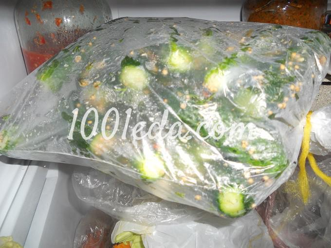 малосольные огурцы пошаговый фото рецепт