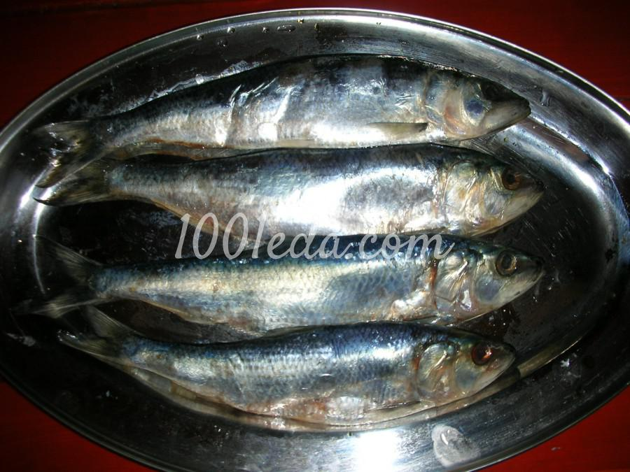 Рецепты соления речной рыбы