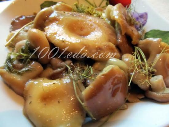 Соленые грибы рецепт пошагово 99