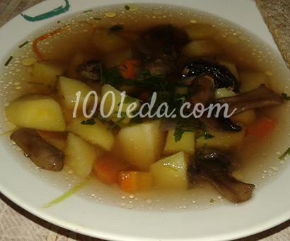 суп из сушеных грибов в мультиварке рецепт с фото