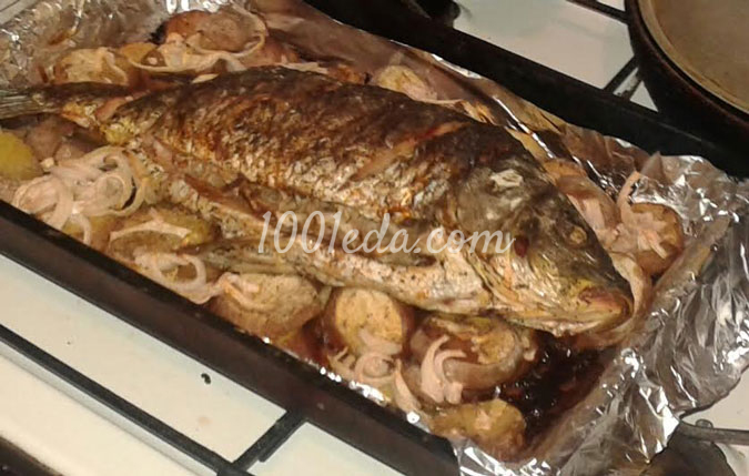 Блюда из творога фото блюда из творога рецепты с фото пошагово