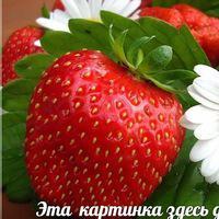 Картинка профиля Марина Федорова